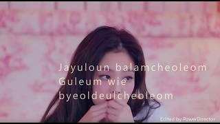 Jennie Kim- Solo Lyrics   RedZoe  
