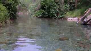 preview picture of video 'Montanejos - Un paseo a la Fuente de los Baños'