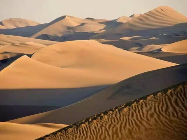 Relieve Del Desierto
