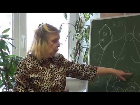 ПИХТА СИБИРСКАЯ    Лекция о пользе фитостеринов