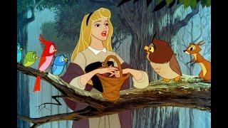 "Sleeping Beauty ""I Wonder"" Disney Princess Vocal Dub"