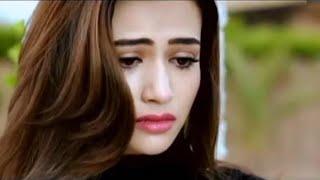 Ek Pal Main Tumko Main Bhula Dunga Full Song   - YouTube