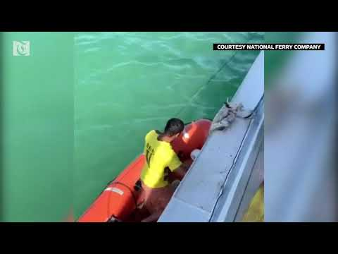 Watch: dramatic footage of an Oman ferry crew rescuing a sailor
