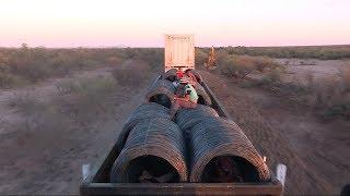 """México: a bordo de """"La Bestia"""", el tren de carga utilizado por los migrantes"""