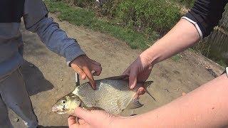 Е1 отчеты о рыбалке белоярка