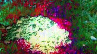 Video Pražský syndrom - LOBO NA RUBY