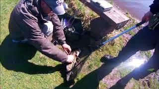 Рыбалка на платнике в савельево 1