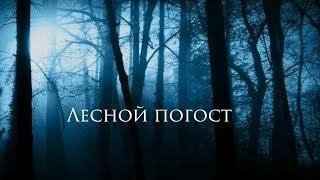 """Трейлер к фильму """"Лесной погост"""""""