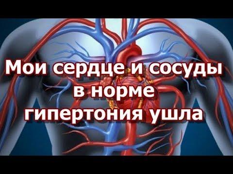 Мои сердце и сосуды в норме - гипертония ушла