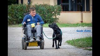 Stage de passation Handi'chiens Octobre 2018 à St Cyprien pour le centre de Marcy-l'Etoile