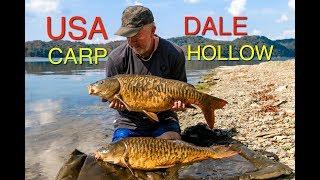 USA Carp   Dale Hollow