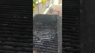 מתכון לדג על גריל פחמים