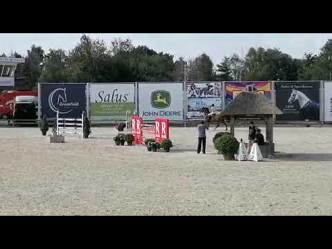 Good start for Eurohorse riders at CSI3***/CSIYH1* LIER