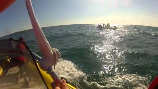 preview picture of video 'Rencontre avec des Dauphins entre Jersey et les Ecrehou le 13 mai 2012 #1'