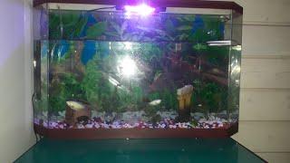 Новый аквариуууум!!!