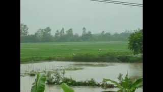 preview picture of video '2012_04_14_1533 Canh dong Phung Cong_Cuu Cao'