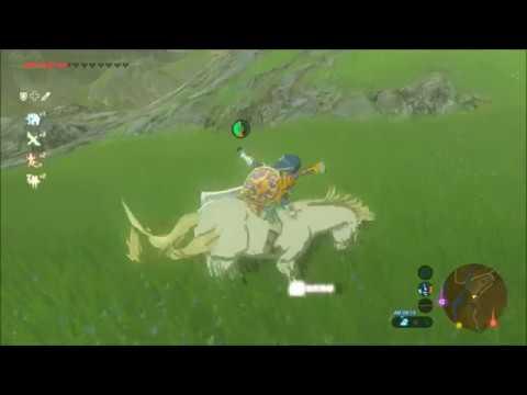 【ゼルダの伝説BOtW】レア馬のいる場所まとめ 骨馬、白馬、巨大馬、光る馬【ブレスオブザワイルド】