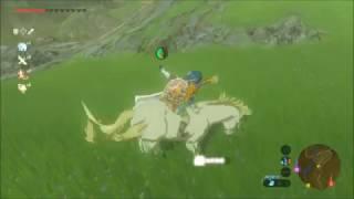 ゼルダの伝説BOtWレア馬のいる場所まとめ骨馬、白馬、巨大馬、光る馬ブレスオブザワイルド