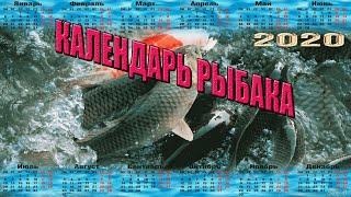 Лунный календарь рыболова 2020 в спб