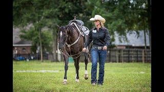 Shoulder Relief Cinch W/ Sarah Rose Pro Barrel Racer By Total Saddle Fit