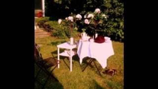 Sunny Day - Joy Williams