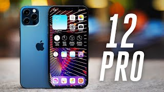 Apple iPhone 12 Pro review: more shine
