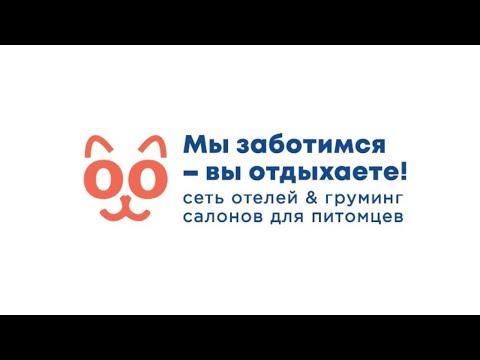 ФРАНШИЗА ОТЕЛЕЙ ДЛЯ ЖИВОТНЫХ BOOKING CAT