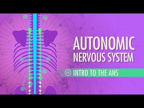 Veränderungen der Laborparameter bei arterieller Hypertonie