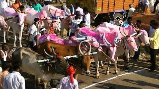 Kudubandi Bullock Cart Race Chittaragi