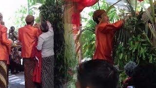 Presiden Jokowi Jalani Prosesi Pemasangan Bleketepe Jelang Pernikahan Kahiyang Ayu