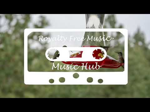 Royalty Free Music | Music Hub | Foresight