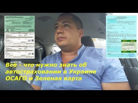 откровенный разговор о автостраховании   ОСАГО Зеленая карта