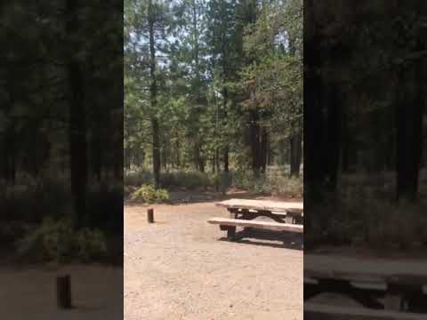Video Of Williamson River Campground, OR