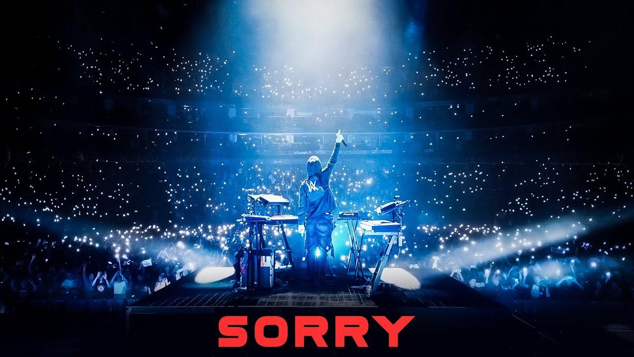 Lirik Lagu Sorry - Alan Walker dan Terjemahan