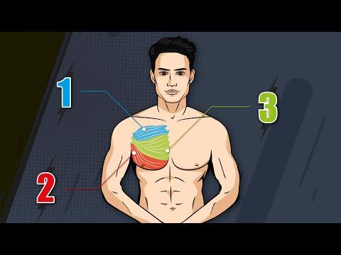 Meilleurs outils pour aider à perdre du poids