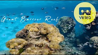 VR180 Virtual Dive Great Barrier Reef | Underwater 5.7K for Oculus Quest