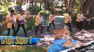 """Video thumbnail of """"Grupo Super T - La danza del gato ( Video Oficial )"""""""