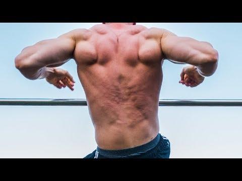 Informacja o więzadeł i mięśni