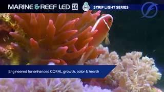 Fluval Nano Fresh & Saltwater LED 6.5W