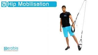 aeroSling - 臀部關節活動 出處 aerobis