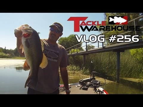 Pre-Fishing Clear Lake with Jared Lintner Part 3 – Tackle Warehouse VLOG 256