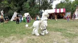 Unicorns At The Fantasy Fair