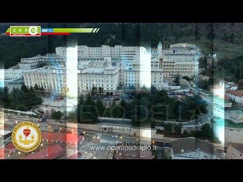 Il sollievo di prezzo di unguento in Rostov su Don