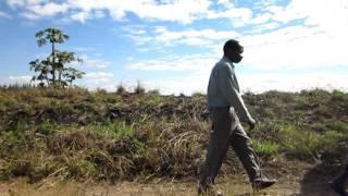 União AACRIVERDES | Visita ao Vale do Infulene - Video Youtube