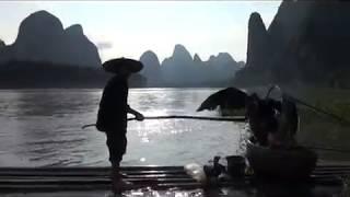 Рыбалка в китае с бакланами