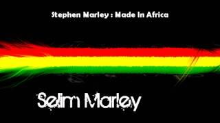 Stephen Marley - Made in Africa + Lyrics