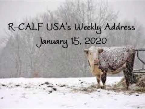 Did USDA Help or Hurt Cattle Industry with Proposed Rule?