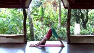swan pose peacock pose explained  yome  free yoga videos
