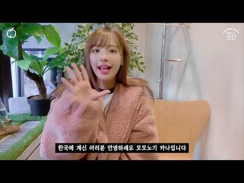 모모노기 카나 MOMONOGI KANA 2019 팬미팅 MOMO LIVE 개최!