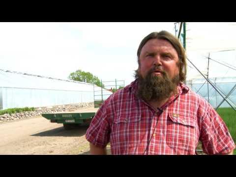 Norges første biokullanlegg på Skjærgaarden Gartneri i Vestfold. Video: Ingvil Snøfugl, SINTEF